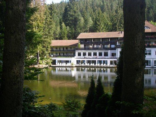 Hotel Langenwaldsee : achterkant van het hotel