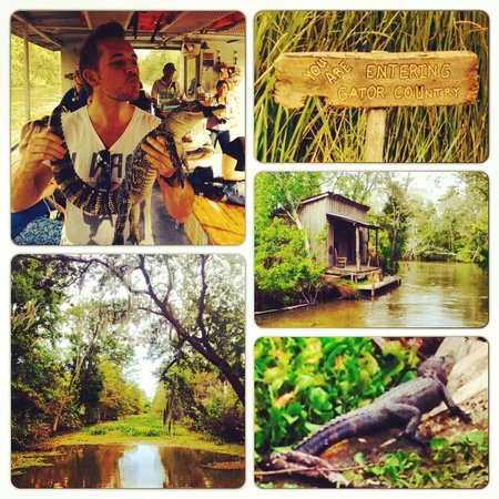 Jean Lafitte Swamp Tours: Diverse and interesting experience