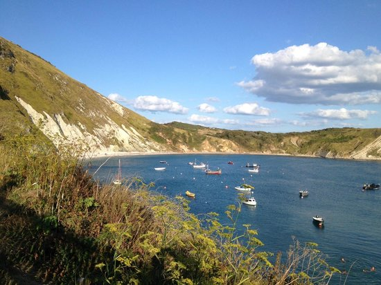 Bishops: Best location in Lulworth - one star