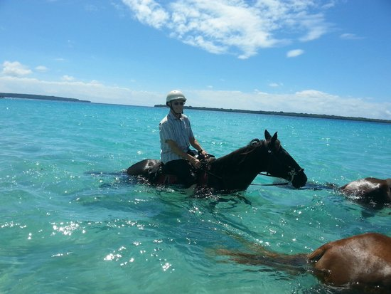 Lope Lope Lodge: Horse riding