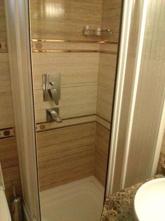 Elysion Hotel : bathroom