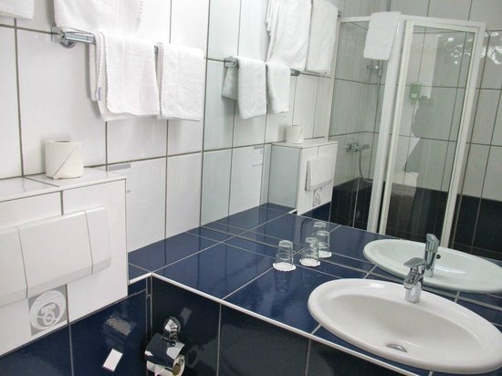 Best Western Hotel De L'Europe: Toilet and sink