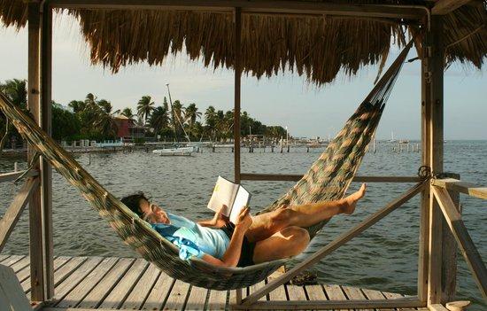 Barefoot Beach Belize: Hammock on the Barefoot Beach Pier.