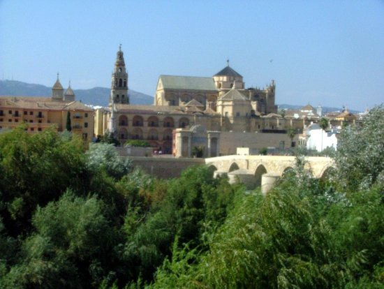 Moschee-Kathedrale (Mezquita de Córdoba): cathedral from across river