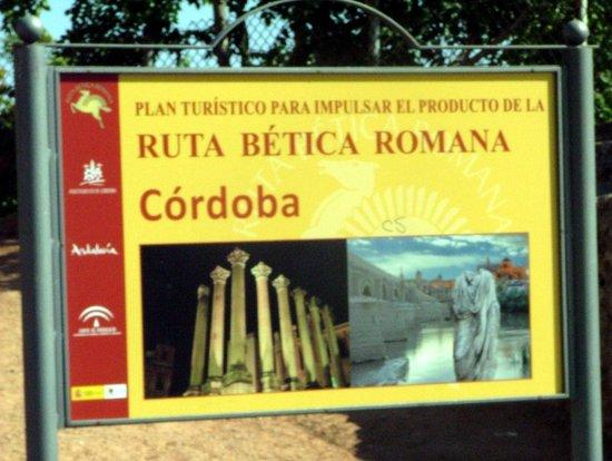 Moschee-Kathedrale (Mezquita de Córdoba): Future Plans