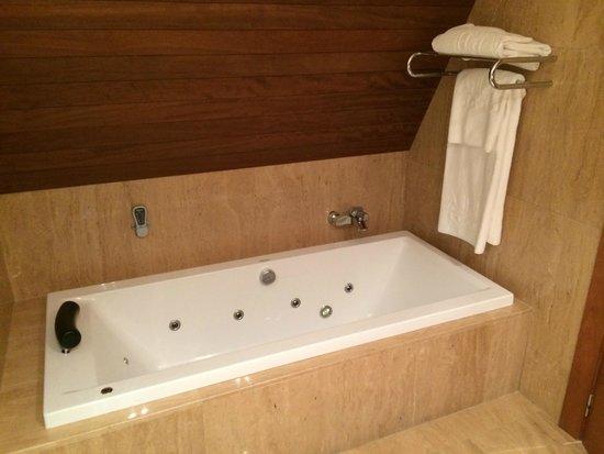 Andorra Park Hotel : Bañera de hidromasaje