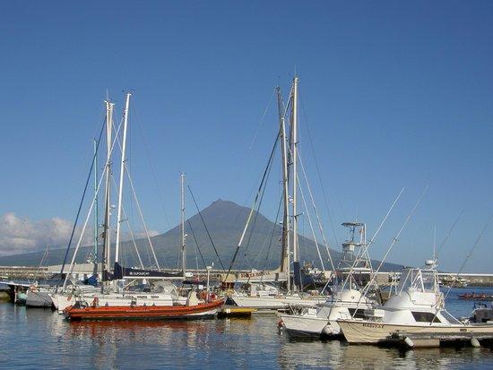 Hotel do Canal: Der berühmte Hafen von Horta: er liegt einem zu Füßen!
