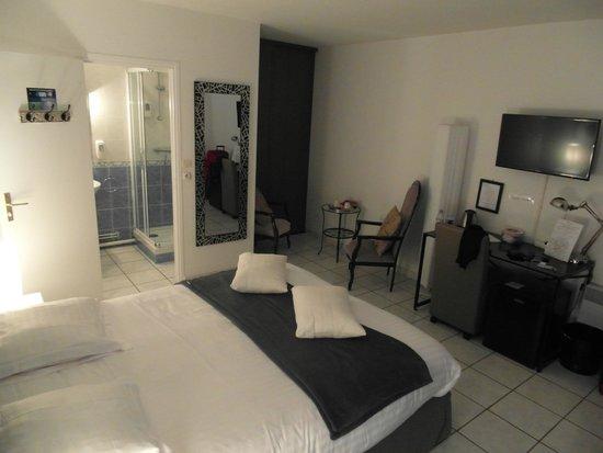 Hôtel L'ideal Le Mountbatten  : La camera
