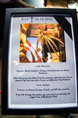 SEA LIFE Oberhausen: Necrologio del polpo Paul