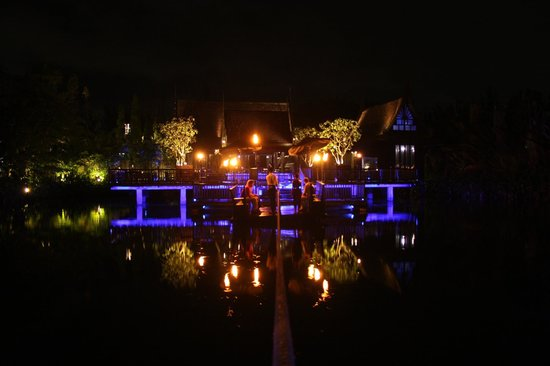 The Slate: Black Ginger - floating magically on a softly lit lagoon.