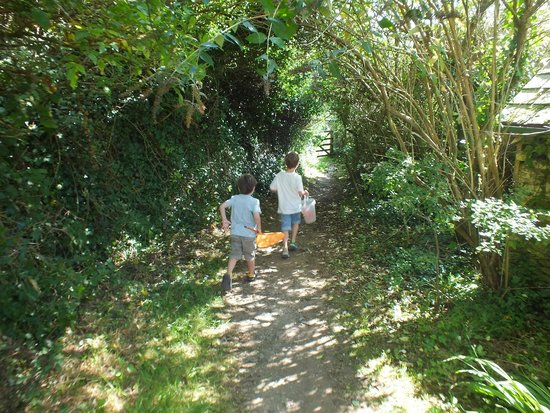 Treveague Farm Cottages: Lovely walk through the farm to get to the beach