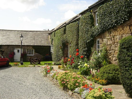 Nant Yr Odyn Country Hotel & Restaurant Ltd: Outside gardens