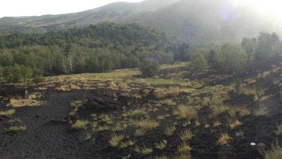 Rifugio Citelli: Crateri Sartorius a pochi metri