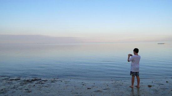 Plantation Island Resort: Tranquil mornings