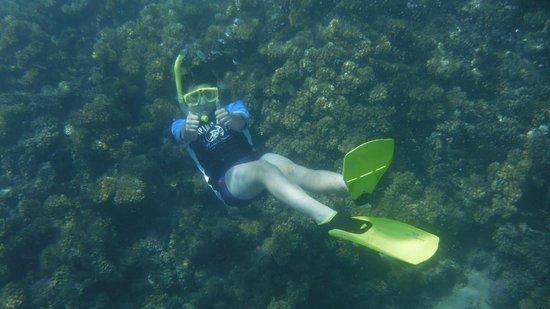 Plantation Island Resort: Water so clear