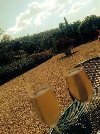 Casa Portagioia - Tuscany Bed and Breakfast: Celebratory champagne on arrival
