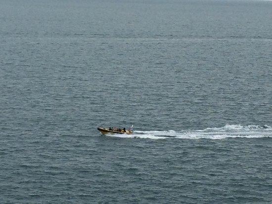 Lulworth & Weymouth RIB Rides: Boat trip