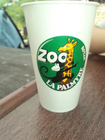 Zoo de la Palmyre: Petit souvenir :)