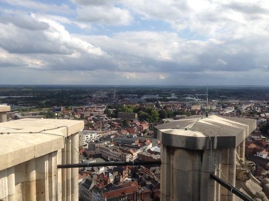 St. Rumbold's Cathedral : vanuit de Romboutstoren Mechelen