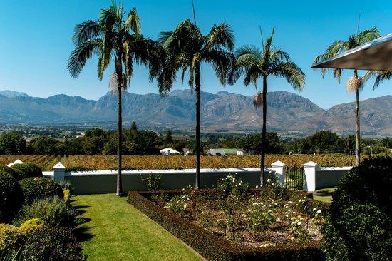 Bosman's Restaurant : Prachtig uitzicht vanaf het terras