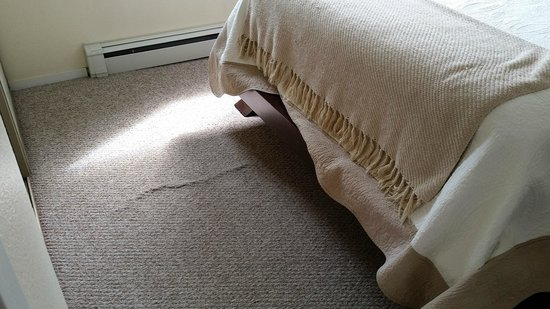 Anchorage Uptown Suites: Bunched dirty old carpeting in bed room