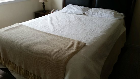 Anchorage Uptown Suites: 2 wafer thin prison pillows - lumpy bed cheap bedding