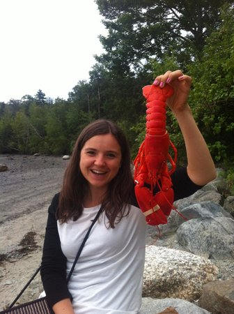 Travelin Lobster : We took the lobsters to go and ate at the beach. Great!