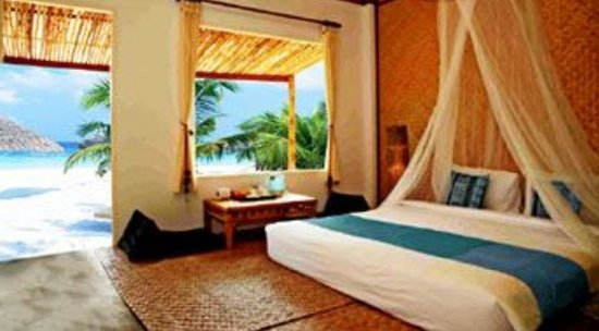 Micky Monkey Beach Hotel