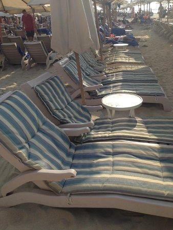 Hilton Dubai Jumeirah Beach : Strand