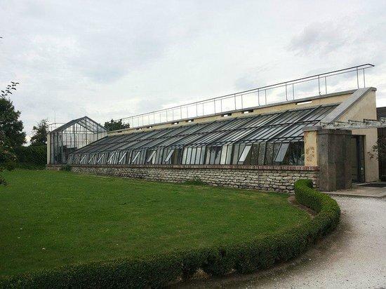 Hotel Chateau Kotera : Orangerie