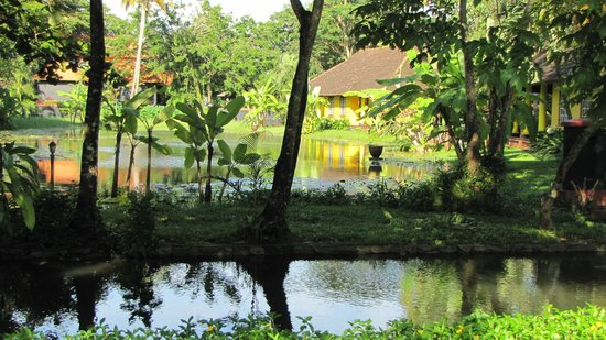 Vivanta by Taj - Kumarakom: A view of the cottage