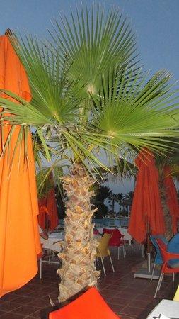 Welcome Meridiana Djerba : salon