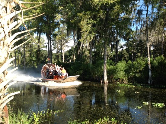 Bushnell, FL: Airboat slides
