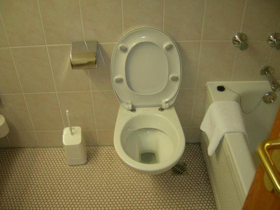 Maritim Hotel Magdeburg: il bagno...