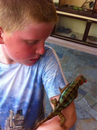 Aquaworld Aquarium & Reptile Rescue Centre : Luca and bluey