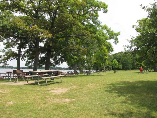 Onsted, MI: Nice beach/picnic area