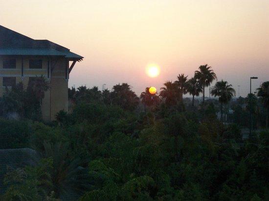 Loews Royal Pacific Resort at Universal Orlando : Paradise