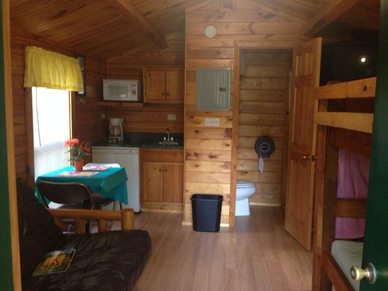 Asheville West KOA : Inside 1 room cabin