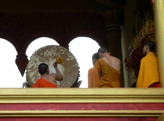 Wat Pa Phon Phao: Monaci alle prova di musica