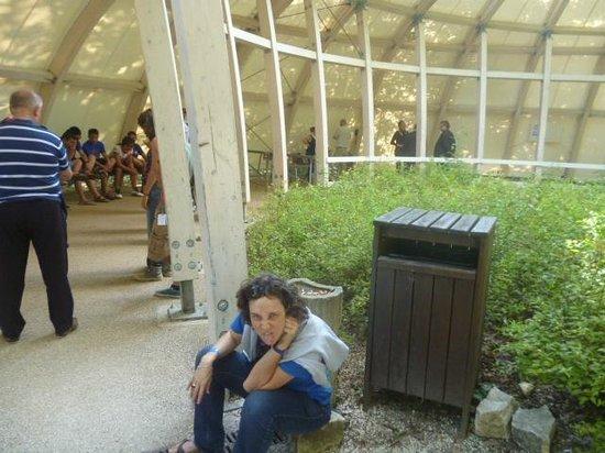 Lascaux II : L'attesa prima di entrare. C'è perfino un gruppo di ragazzi dalla Mongolia.    .