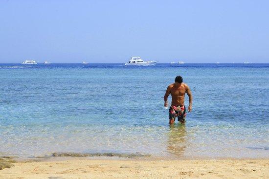 Coral Sea Sensatori - Sharm El Sheikh: Beach