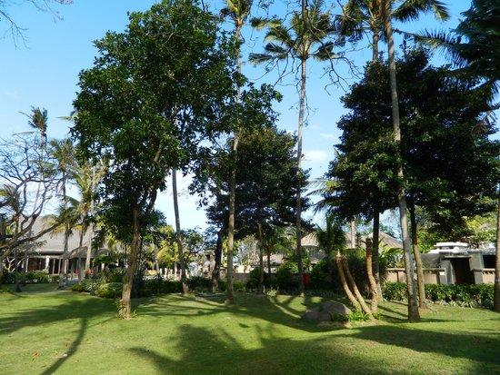 Prama Sanur Beach Bali: giardino