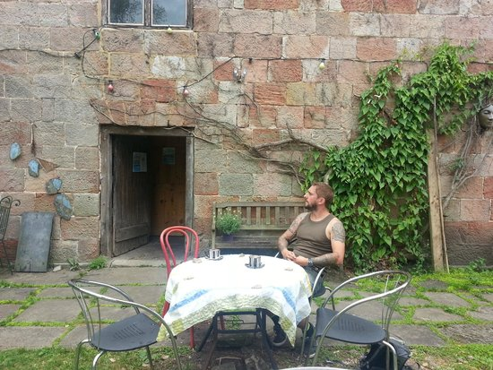 The Garden Cafe: garden cafe
