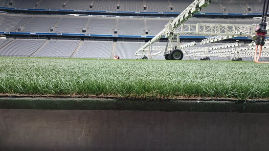 Allianz Arena: pitch