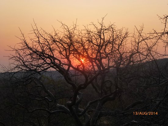 Ongava Lodge: sunset - from the deck