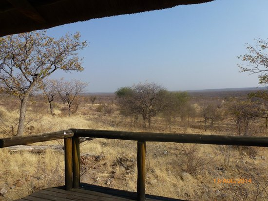 Ongava Lodge: view from the deck