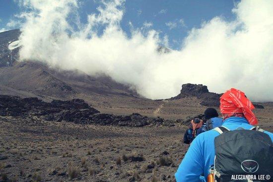 Kilimandscharo-Massiv (Kilimanjaro): Lava Tower II