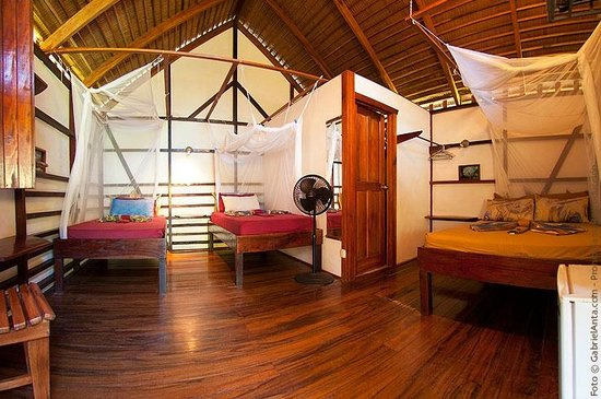 Coco Loco Lodge: Bungalow 1-4pers.