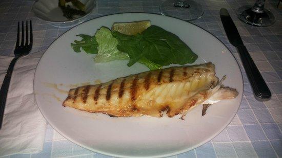 Giritli Istanbul: grilled fish