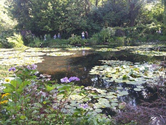 Maison et jardins de Claude Monet : Il laghetto con le ninfee